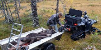 ATV trailer retrieve big game